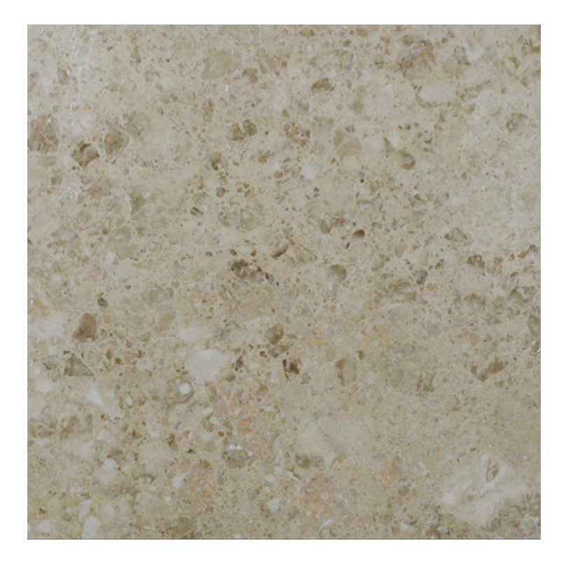 Cappuccino Brown Polished Marble Tiles 18x18 -marble sale-Atlantic Stone Source
