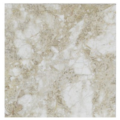 Cappuccino Brown Antique Polished Marble Tiles 18x18 -marble sale-Atlantic Stone Source