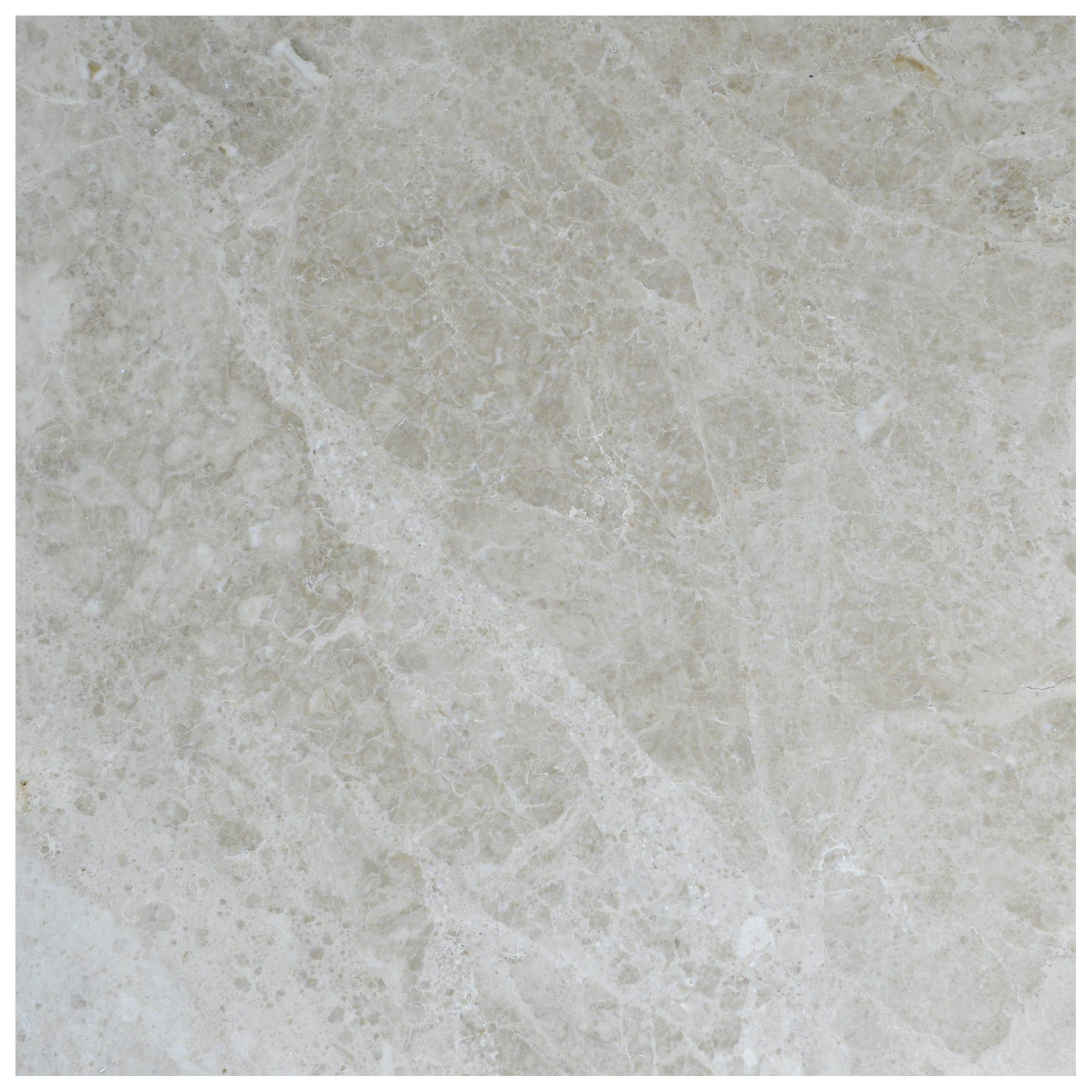 Cappuccino Brown Polished Marble Tiles 24x24-marble sale-Atlantic Stone Source