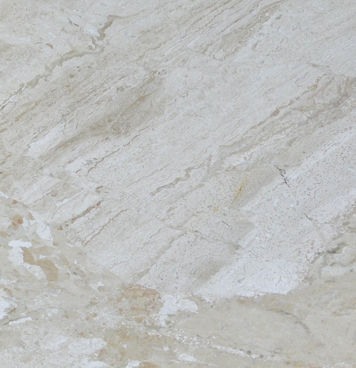 Venice Polished Marble Tiles 24x24-marble sale-Atlantic Stone Source