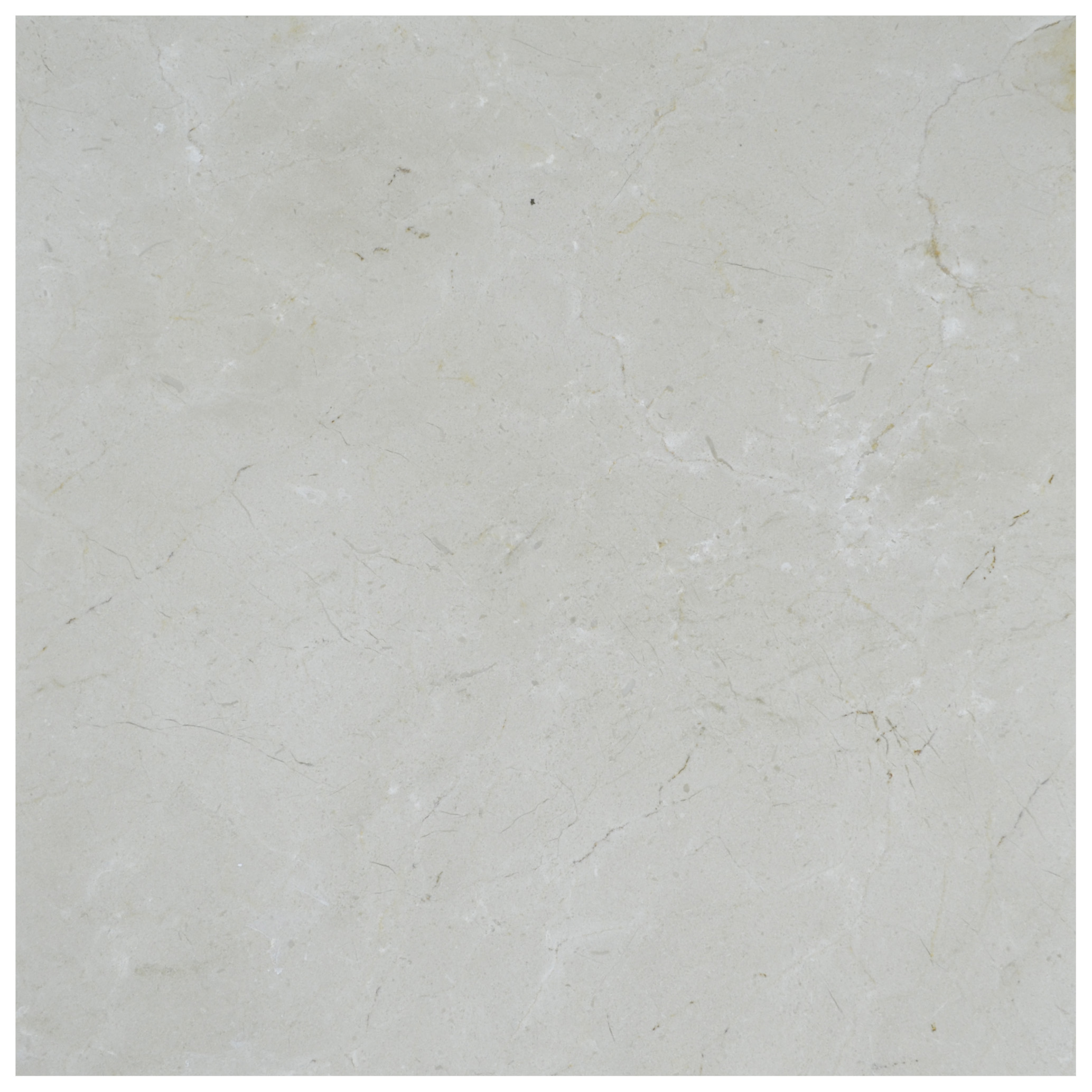 Cream Marfil Standard Polished Marble Tiles 24x24-marble sale-Atlantic Stone Source