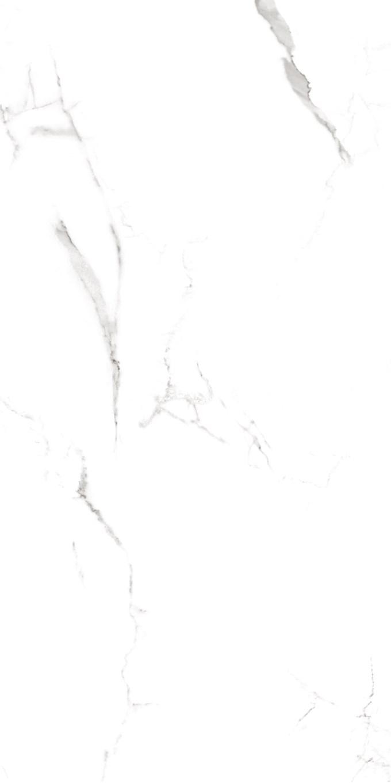 Calacatta Porcelain Tiles 24X48 15
