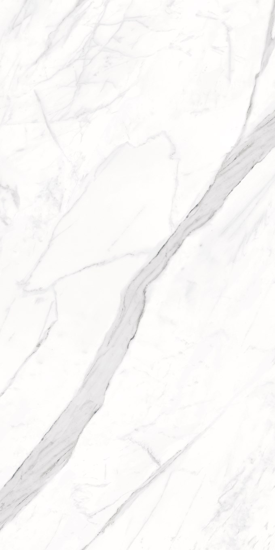 Calacatta Porcelain Tiles 12X24 11