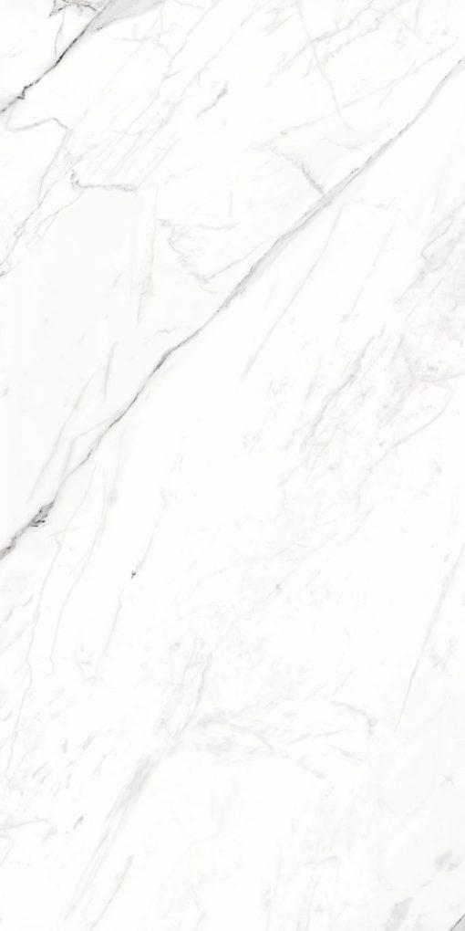 Calacatta Porcelain Tiles 24X48 5