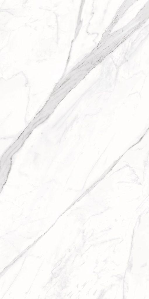Calacatta Porcelain Tiles 24X48 4