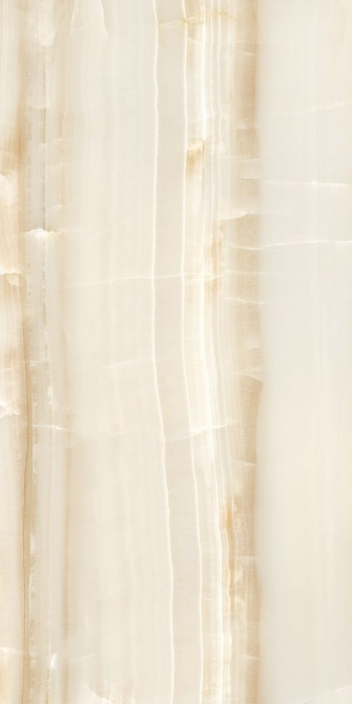 Omnia Brown Porcelain Tiles 24X48 3