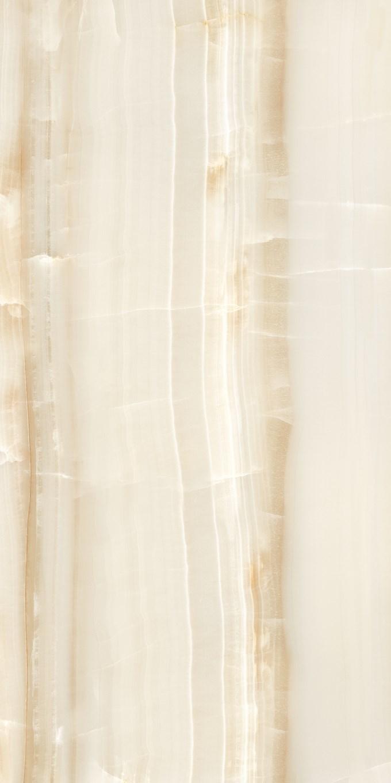Omnia Brown Porcelain Tiles 24X48 6