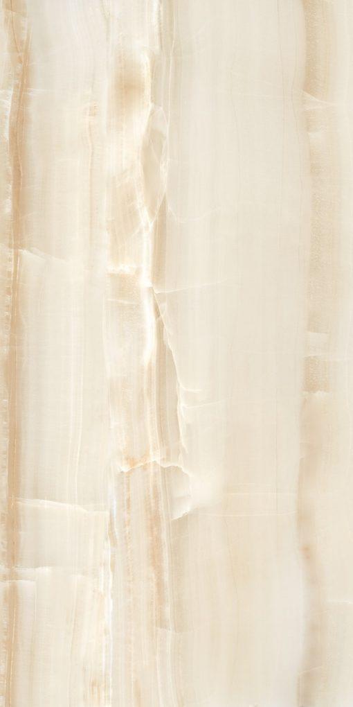 Omnia Brown Porcelain Tiles 24X48 4
