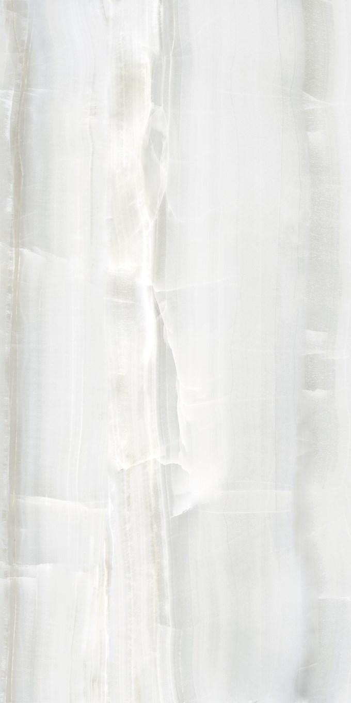 Omnia Grey Porcelain Tile 24X48 10